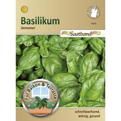 Bazsalikom 'Genoveser' / Ocimum basilicum