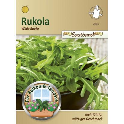 Rukkola 'Wilde Rauke' / Diplotaxis tenuifolia