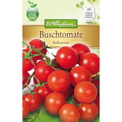 Paradicsom 'Balkonstar' / Solanum lycopersicum