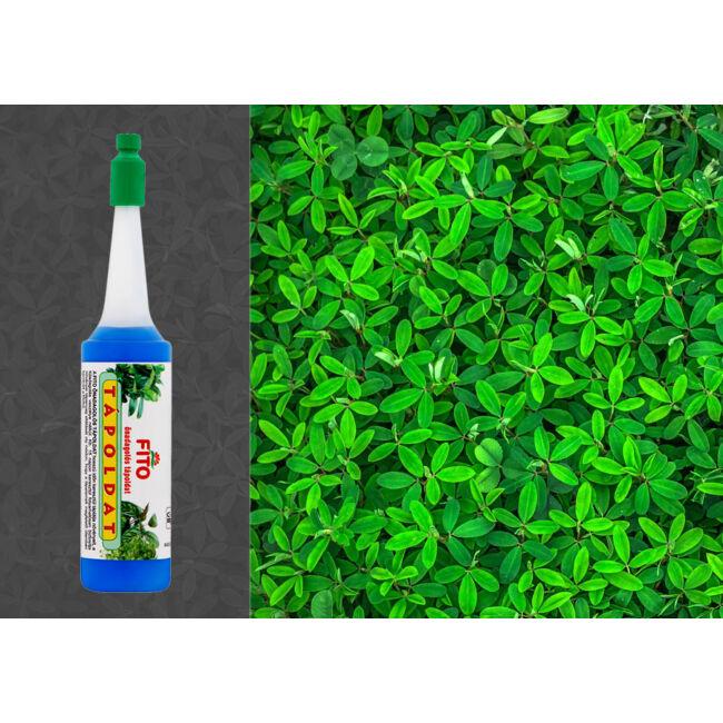 Fito önadagolós tápoldat - zöld növényhez