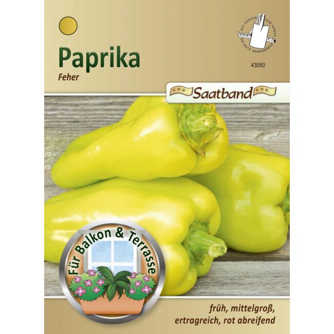 Paprika 'Fehér' / Capsicum annuum