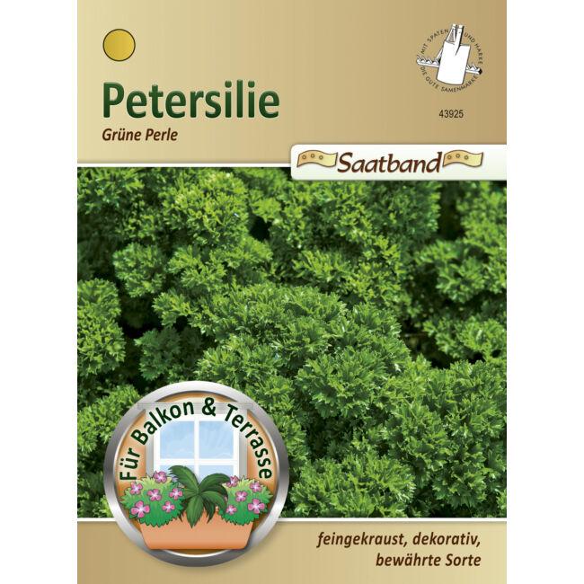 Metélőpetrezselyem 'Grüne Perle' / Petroselinum crispum