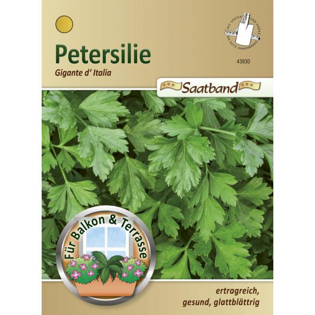 Petrezselyem 'Gigante d'Italia' / Petroselinum crispum