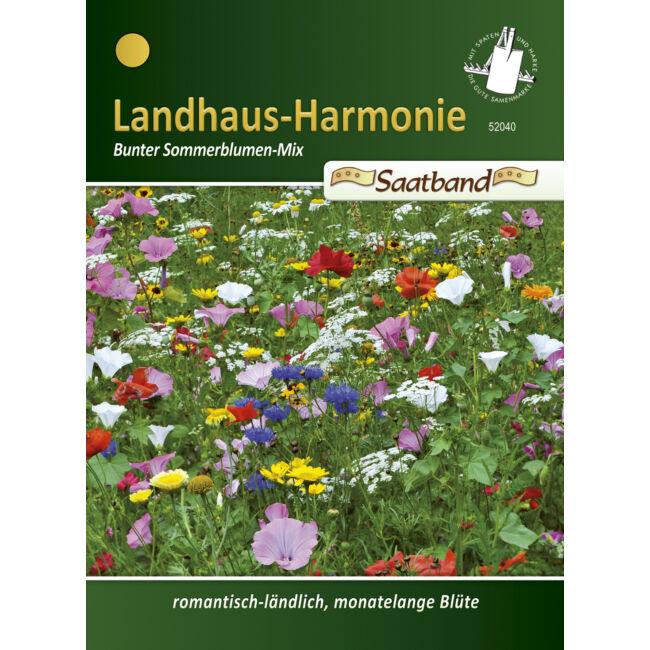 Egynyári virágkeverék 'Falusi harmónia'