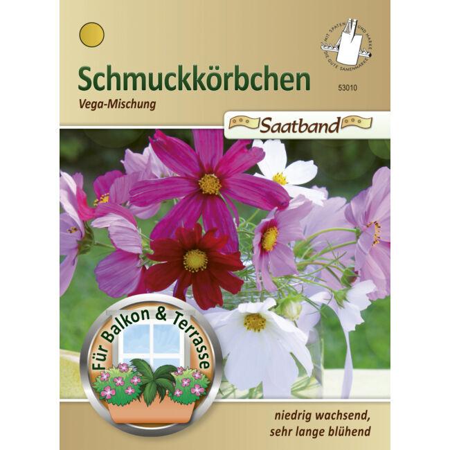Kerti pillangóvirág 'Vega-Mischung' / Cosmos bipinnatus