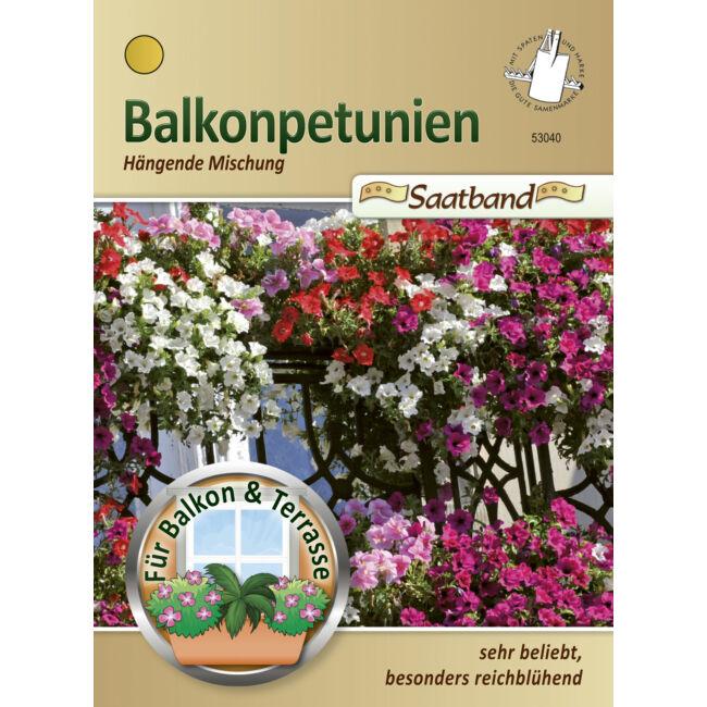 Balkonpetúnia 'Lefutó színkeverék' / Petunia pendula