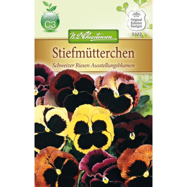 Árvácska 'Schweizer Riesen Ausstellungsblumen' / Viola x wittrockiana
