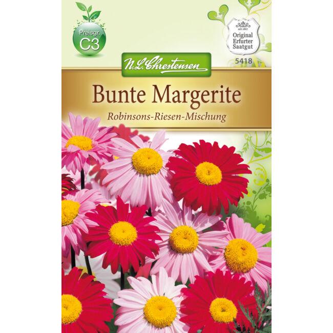 Színes margaréta 'Robinsons-Riesen-Mischung' / Chrysanthemum coccineum